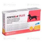 Picture of FORTEKOR PLUS 1.25mg/2.5mg N30 (Elanco)